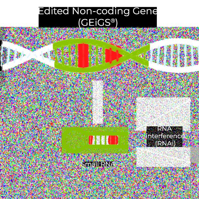 GEiGS® targets endogenous or exogenous genes